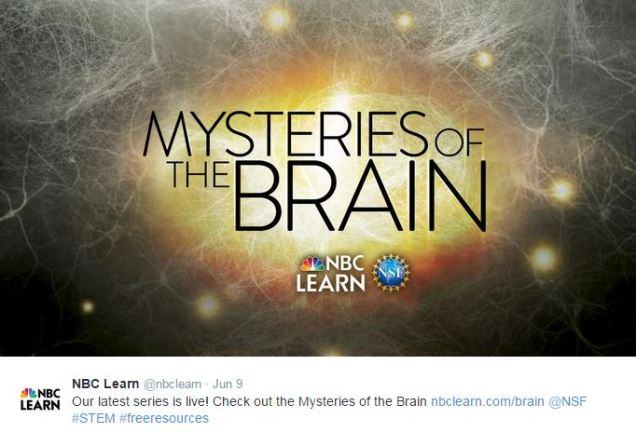 Mysteries of the Brain