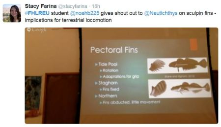 #FHLREU student @noahb225 gives shout out to @Nautichthys on sculpin fins - implications for terrestrial locomotion