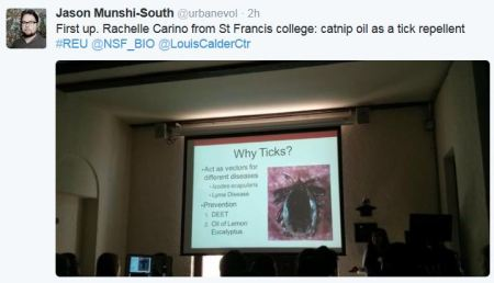 First up. Rachelle Carino from St Francis college: catnip oil as a tick repellent #REU @NSF_BIO @LouisCalderCtr