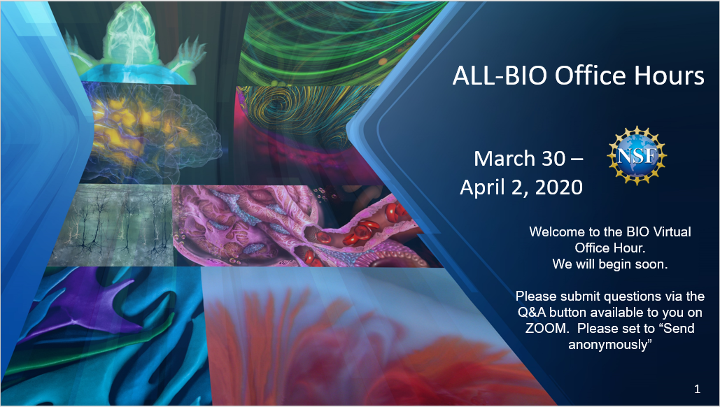 A slide depicting various biological specimens and noting BIO-wide office hours were held March 30 through April 2, 2020